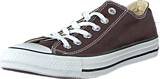 Converse - All Star Seasonal Ox Burnt Umber