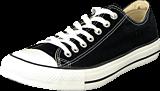Converse - All Star Canvas Low Canvas Black
