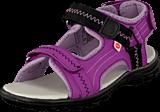 Pax - Gadfly Lilac