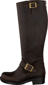 Johnny Bulls - High Zip Back Brown/Gold