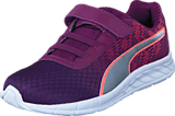 Puma - Comet PS Nrgy Peach-dark Purple