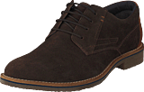 Senator - 451-4467 Dark Brown
